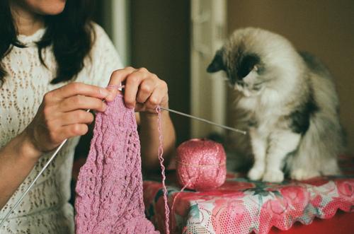 Gato-de-olho-no-artesanato