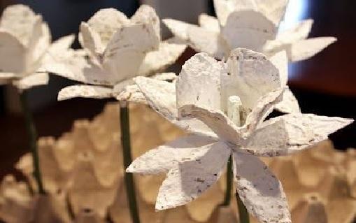 Flor Reciclável Feita Com Bandeja de Ovos.