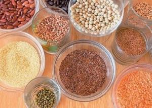 vaso- sementes-4-mosaico