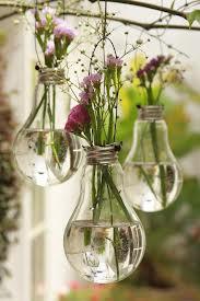vasinhos-lampadas