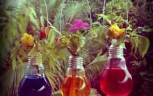 Vasinhos de Planta Usando Lâmpadas – Como Fazer