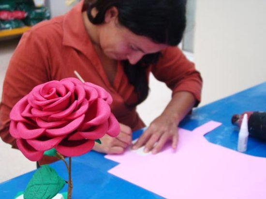 rosa-eva