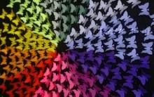 Quadro Decorativo em Círculo Cromático – Material e Como Fazer