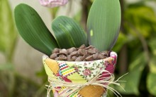 Decoupage em Vaso – Material e Como Fazer