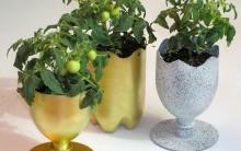 Vasinhos de Planta de Garrafa Pet – Materiais e Como Fazer