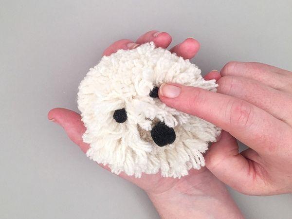 Cachorro de Pom Pom de Lã  rosto