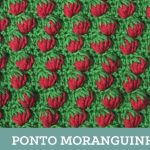 Ponto Croche Moranguinho – Como Fazer