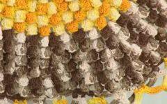 Tapete Gomos Em Crochê – Material e Vídeo Aula