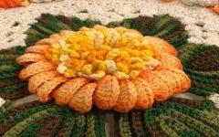 Flor de Laranjeira Em Crochê – Material e Vídeo
