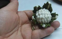 Amigurumi Couve Flor Em Crochê – Material e Vídeo